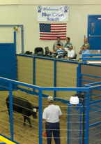 The Blue Grass Stockyard location in Stanford holds its first day of auctions in 2007