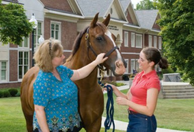 Equine Education Is a Growth Industry
