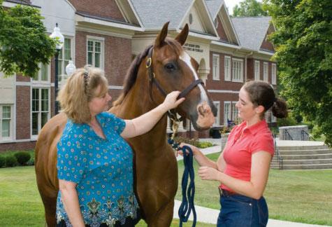Equine Studies college major