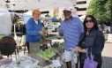 Farmers Markets: Growing the Local Food Economy