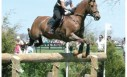 Rolex Three Day Event is warm-up for2010 Alltech World Equestrian Games