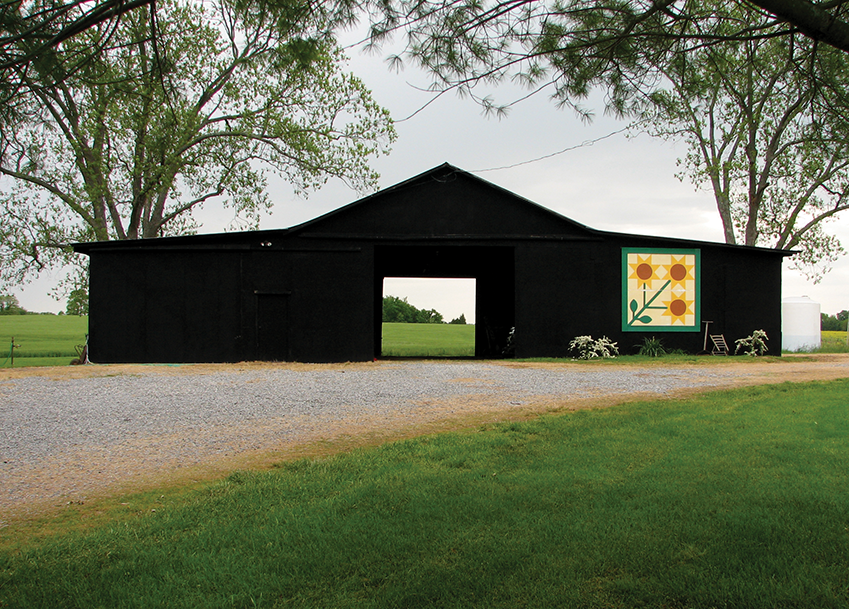 The Kentucky Quilt Trail project features quilt squares painted on a wide variety of canvases, such as barns and floodwalls.