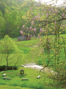 "Take in the scenic beauty of Snug Hollow Farm Bed & Breakfast, which lies at the end of a dirt road in an Estill County Appalachian ""holler"" 20 miles east of Berea."