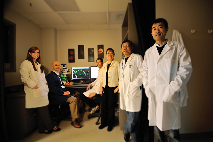 Among the neuroscience researchers at the UK Sanders-Brown Center on Aging are, from left, Danielle Goulding; Adam Bachstetter; Bob Sompol; Linda Van Eldik; Ed Dimayuga; and Bin Xing.