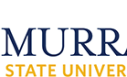 Murray State chemistry publication offers insight into a new class of materials