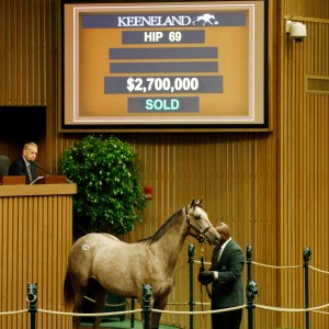 The Tapit filly was bought by Coolmore's M.V. Magnier.