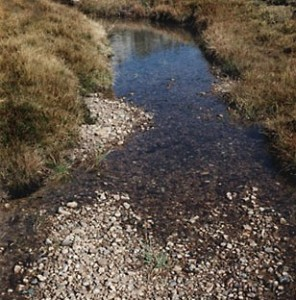 Division of Water: Creek gravel removal can degrade waterways, harm