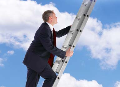 TLR corporate ladder
