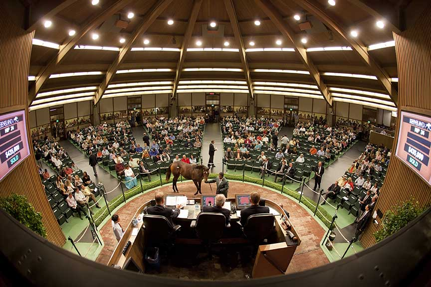 A photo from the 2011 September Sale at Keeneland.