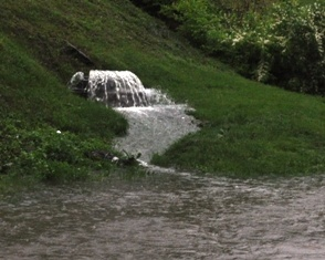 A sanitary sewer overflowing nextto a creek in Lexington.