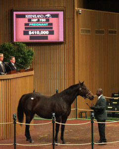 Twin Creeks Farm paid the day's highest price of $410,000 for the winning Dixie Union mare Little Bug, who is in foal to Tiznow.