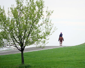 A scenic view of Keeneland during the Spring Meet.