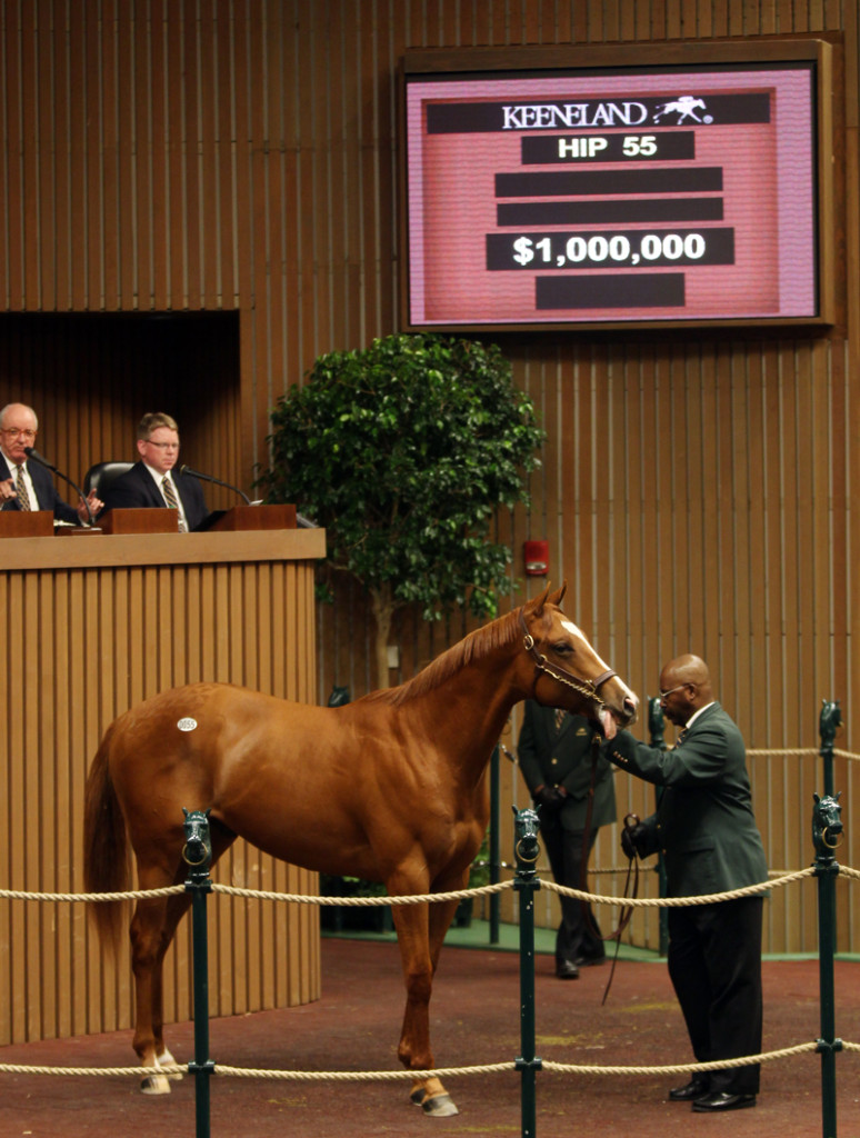 Malibu Moon was purchased for $1 million during the 22nd annual Keeneland April Two-Year-Olds in Training Sale.