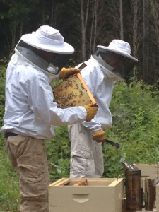 Bee Bold Apiaries co-founders Eric Hanan and Joseph G. Lelinho install a hive on the Montclair Historical Society's working farm, thanks to a donation from Toyota. National Pollinator Week is June 16-22, 2014, a celebration of the valuable ecosystem effort by bees, birds, butterflies, bats and beetles.