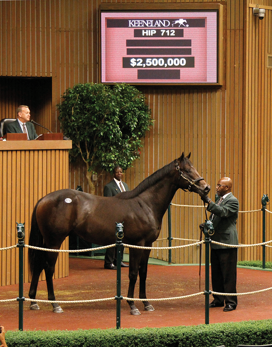 The colt War Front sold for $2.5 million during the 2013 Keeneland September Yearling Sale, the highest-priced purchase of the sale to date.