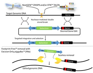 geneediting
