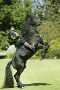 GOTRH Black horse stand