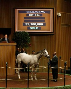 Whisper Hill's Mandy Pope acquired the colt by North American leading sire Tapit for $2.1 million.