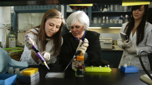 Dr. Lisa Cassis in her lab on Tuesday March 11, 2014  in Lexington, Kentucky . Photo by Mark Cornelison | Staff