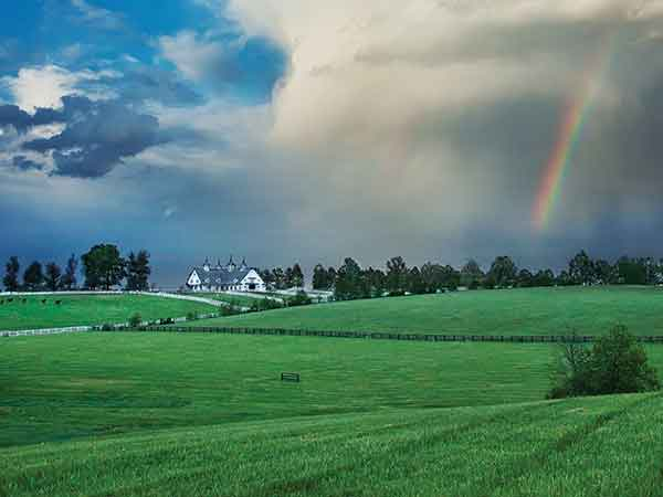 Historic Manchester Farm, located in the heart of the Bluegrass next to Keeneland Race Track, is one of the most recognizable and widely photographed farms in Kentucky. The iconic farm was sold in January 2016 to the even-more-famous neighboring Calumet Farm for $12.5 million.