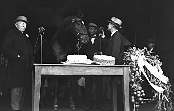 Man o' War celebrated his 21st birthday  at Faraway Farm in 1938 with owner  Samuel Riddle, groom Will Harbut and  announcer Clem McCarthy.