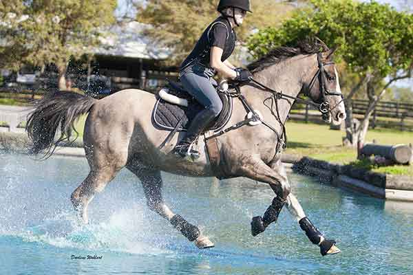 Pete, with Ashley Jones riding, cantered through the water. (Darlene Wohlart)