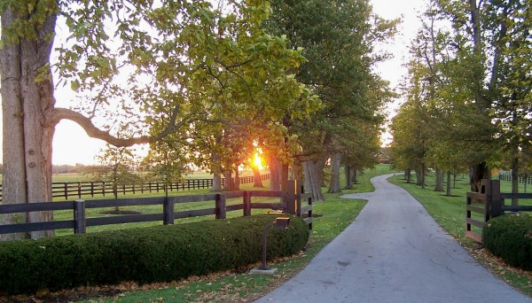 Oldham County is the wealthiest of all Kentucky counties, and its scenery contributes to its superb quality of life.