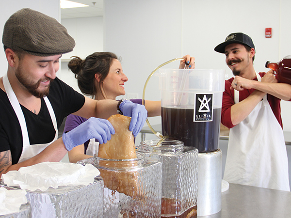 Elixir Kombucha owners are, from left, Ryan Cheong, Danielle Wood and Corey Wood. They started their company in 2016.