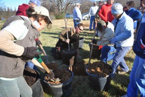 Volunteers at Bernheim Arboretum and Research Forest planted trees received through a Plant for the Planet grant from LG&E and KU.