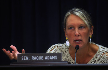 Sen. Julie Raque Adams, R-Louisville.