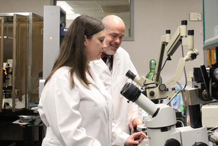 Mentor Dr. Chris Norris at the microscope with trainee Jenna Gollihue. Gollihue is one of the first beneficiaries of an NIH grant to Sanders-Brown to train the next generation of dementia researchers. (Elizabeth Thompson)